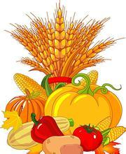 秋季,牛皮癣患者饮食原则